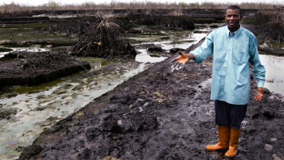 Bildergebnis für Niger Delta stark von Umweltverschmutzung betroffen sind.
