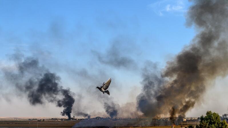 Dunkler Rauch bedeckt teilweise den Himmel über einer Stadt, in der Bildmitte fliegt eine Taube